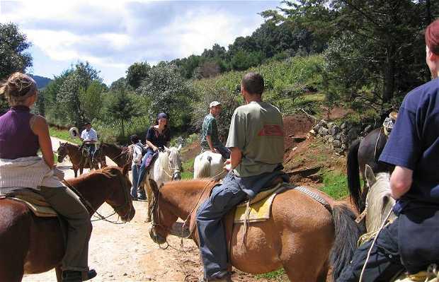 Excursión a San Juan Chamula en Caballo