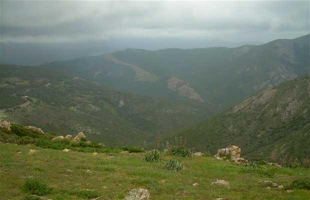 Cargèse