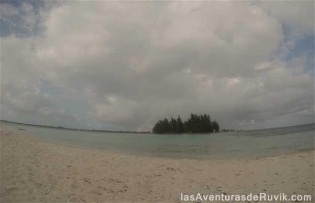 Morgans Cay
