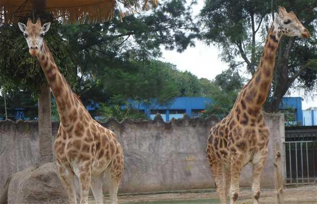 Parco Zoologico Nazionale La Aurora