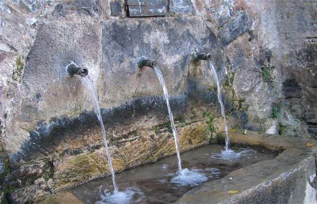Fuente de los Caños