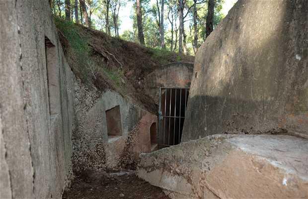 Ruta Refugios y trincheras