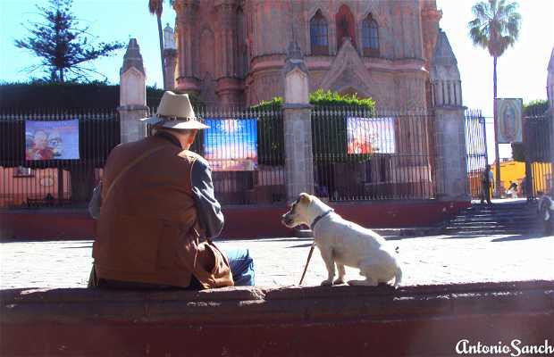 Plaza San Miguel de Allende