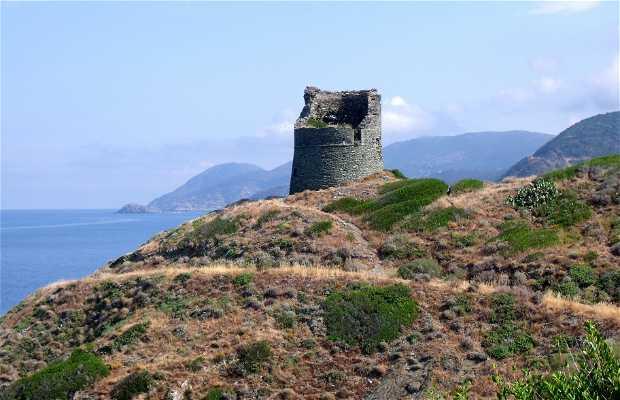 Torre de Scalo