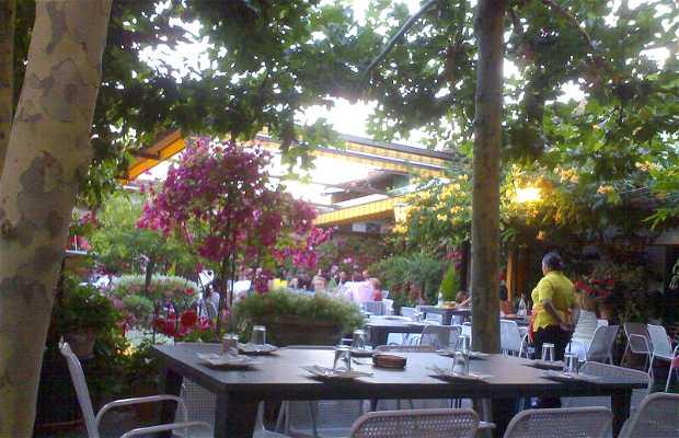 Bar Terraza El Rincón