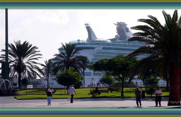 Transatlantic Cruises in Gran Canaria