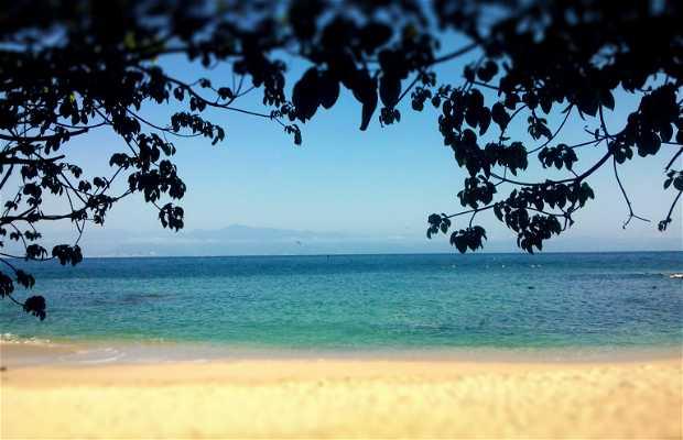 Playa Palo verde, Nayarit