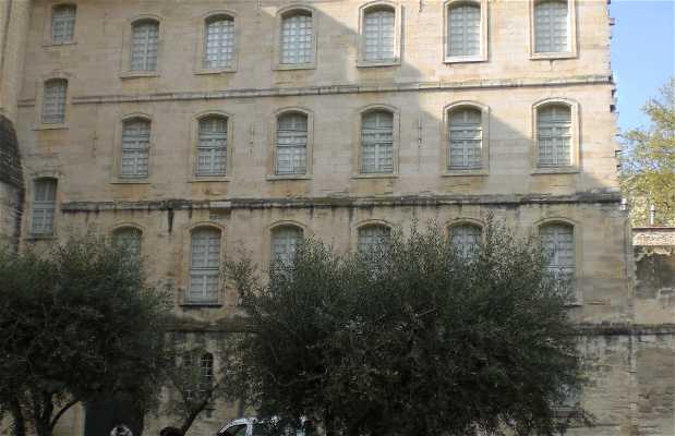 Il Parco Pierre de Deimier ad Avignone