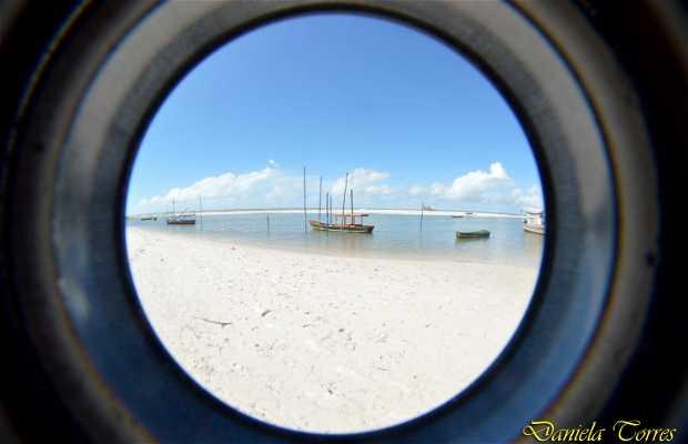 Playa de Ajuruteua