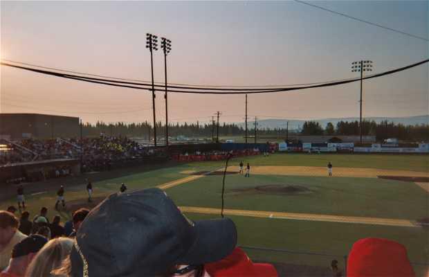 Midnight sun partie de base-ball