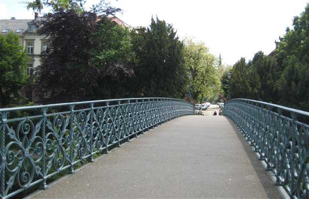 Río Dreisam