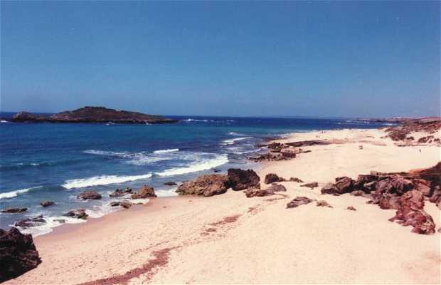 Playa de la Ilha do Pessegueiro