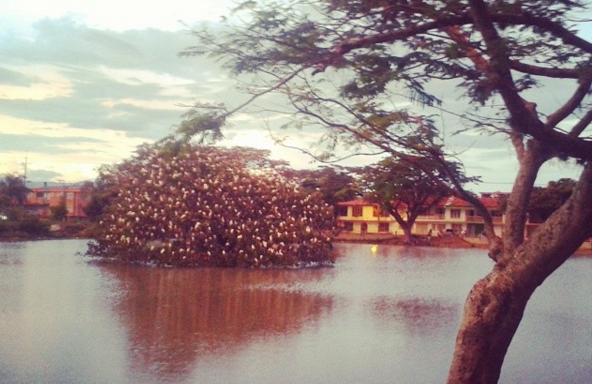 Lago Chilicote