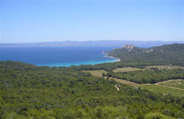 Conservatorio botánico nacional mediterráneo de Porquerolles
