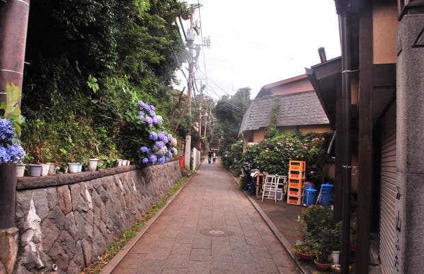 Calles de Enoshima