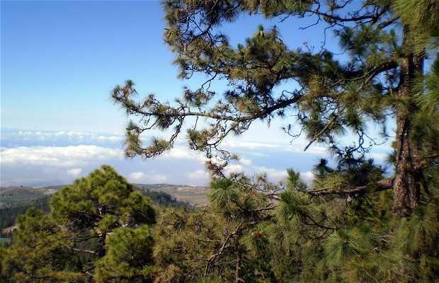 Monte Vica y Lajas
