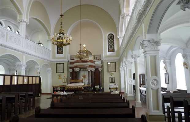 Sinagoga Nożyk