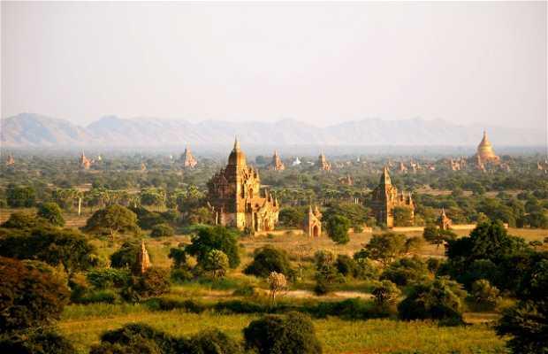 Pradera de Bagan