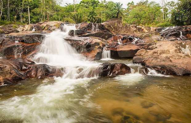 Estación de Conservación y Desarrollo de la vida salvaje de Khao Chong