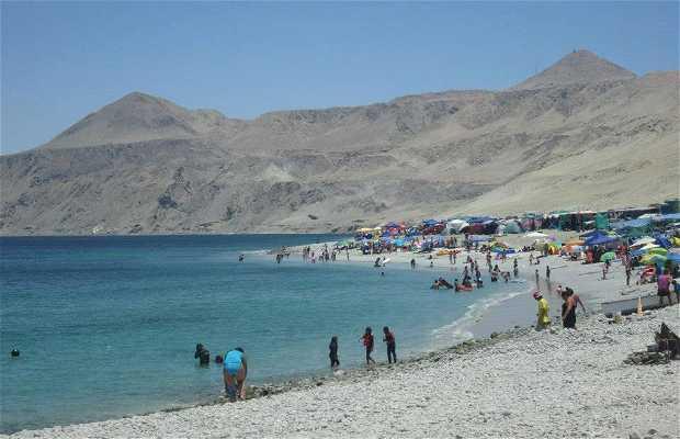 Playa Punta Rieles