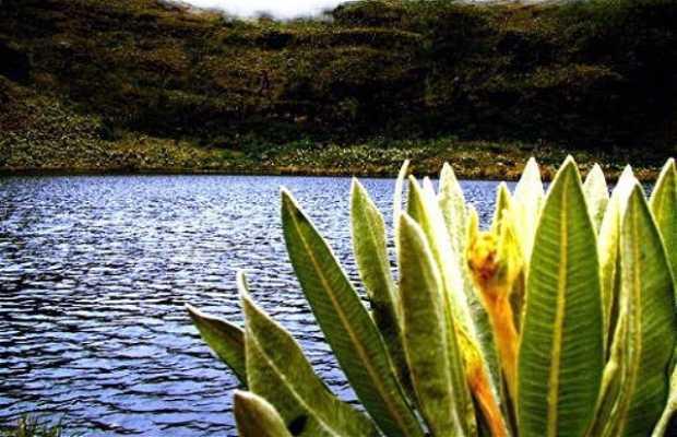 Laguna de Iguaqué