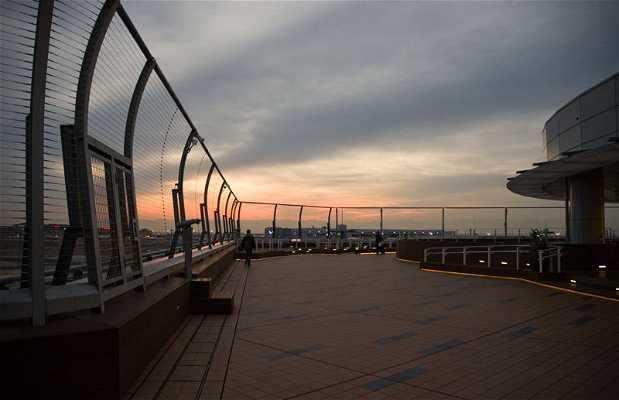 Mirador del aeropuerto Haneda