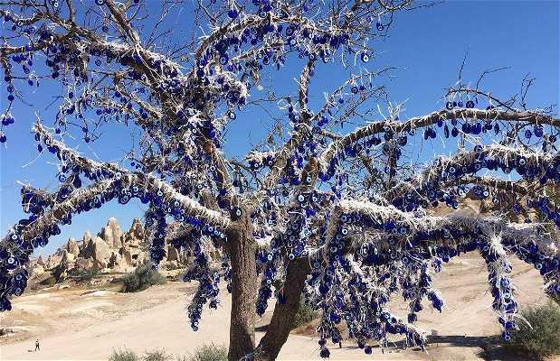 Arboles de la suerte en Capadocia