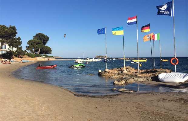 Playa Sargamassa
