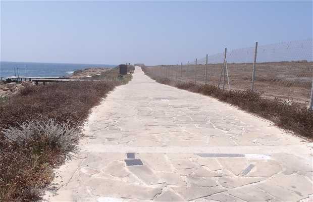 Camino Peatonal Afrodita's Beach