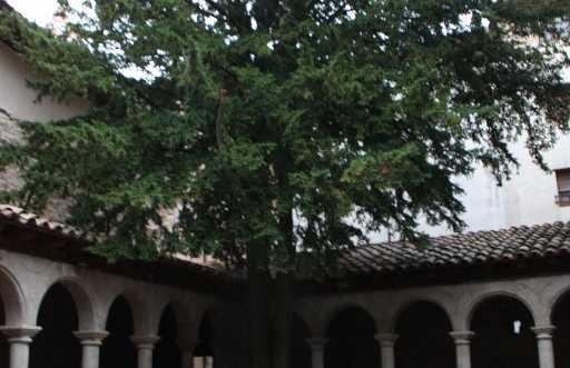 Claustro de la Iglesia de Sant Llorenç de Morunys