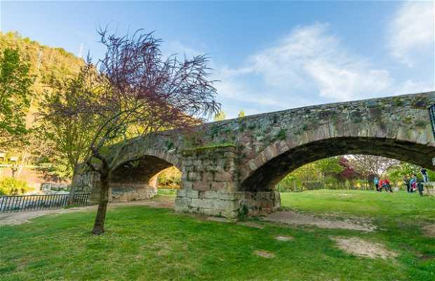 Puente de Landía