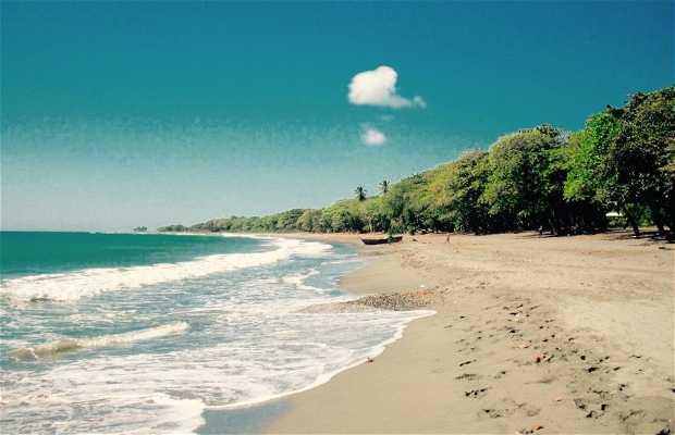 Playa Cocolandia