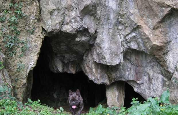 Cuevas Hernani