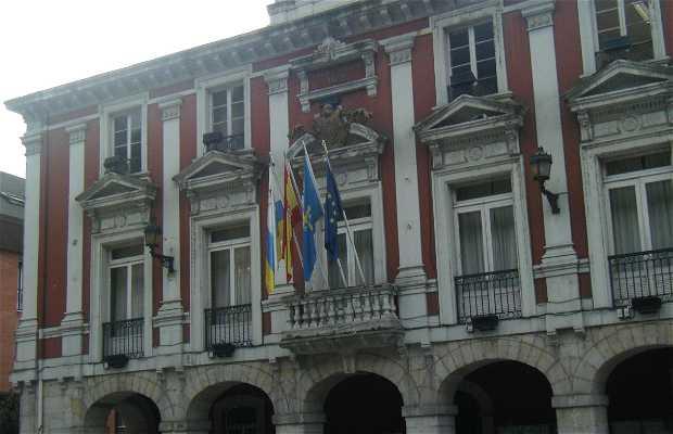 Conceyu de Mieres (Ayuntamiento)