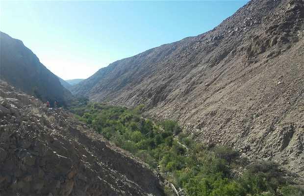 Ruta Patrimonial Circuito Los Altos de Arica