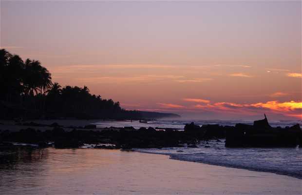 Playa del Espino