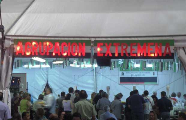 Fiestas de Alcorcón