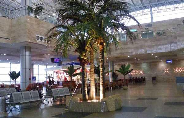 Aeropuerto del Cairo