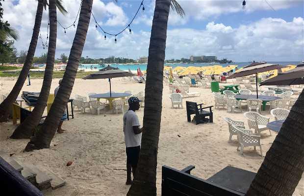 Playa Brownes