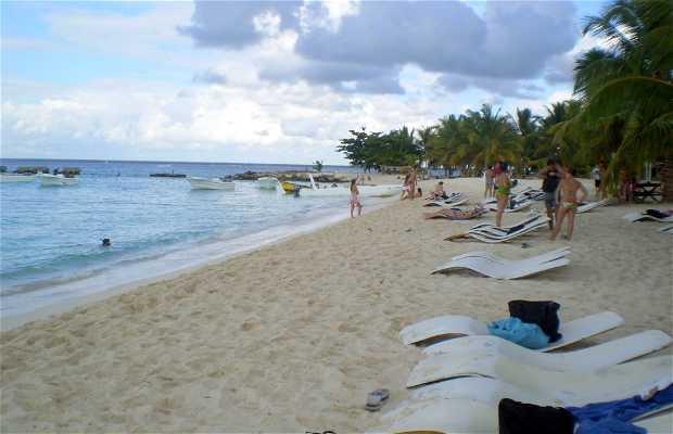 Playa Catuano (Isla Saona)