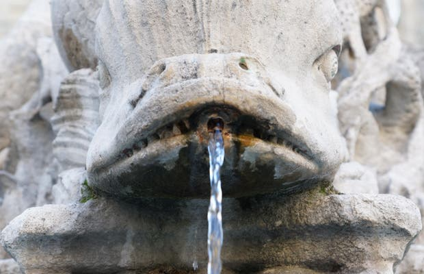 Fontaine aux 4 dauphins