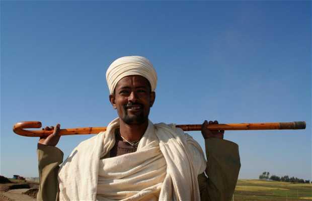 Stick etíope para caminar