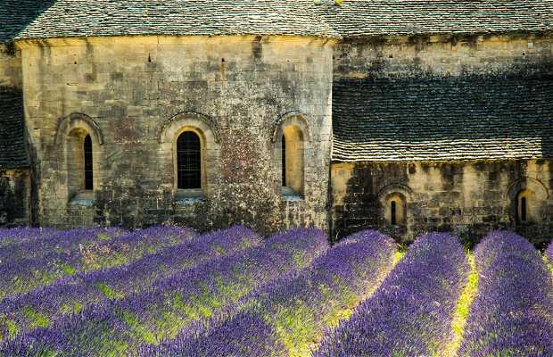 Abbaye de Notre Dame de Senanque