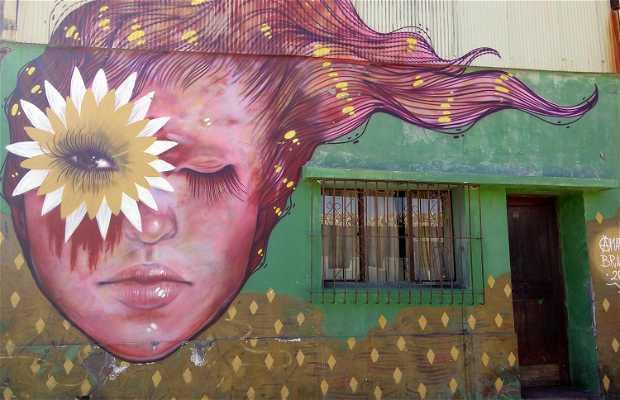 Graffities en el Cerro Polanco