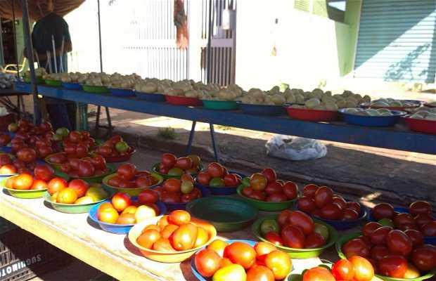 Feira do Guanandi