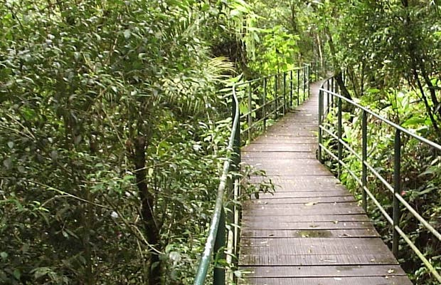 Parc National Serra dos Orgaos
