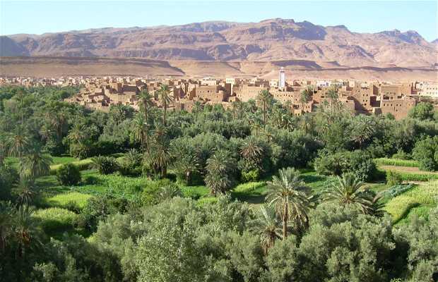 Oasis de Tafilalet