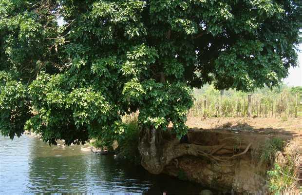 Río Mejapa