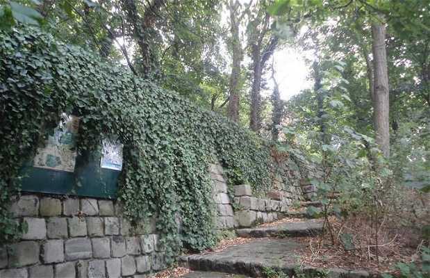 Jardín salvaje de Saint-Vincent