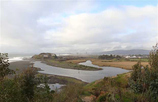 Humedal Boca Maule